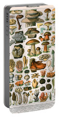 Decorative Print Of Champignons By Demoulin Portable Battery Charger by American School