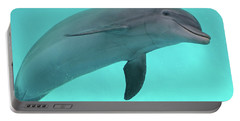 Dolphin Portable Battery Charger by Sandy Keeton