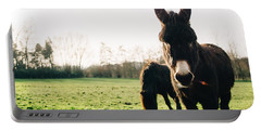 Donkey And Pony Portable Battery Charger by Pati Photography