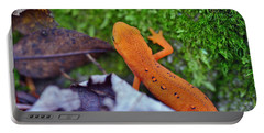 Eastern Newt Portable Battery Charger by David Rucker