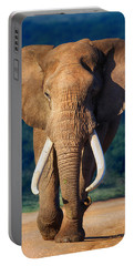 Elephant Approaching Portable Battery Charger by Johan Swanepoel