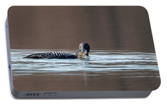 Feeding Common Loon Portable Battery Charger by Bill Wakeley