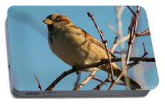 Female House Sparrow Portable Battery Charger by Mike Dawson