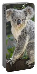 Female Koala Portable Battery Charger by Jamie Pham