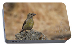 Female Red Crossbill Portable Battery Charger by Doug Lloyd
