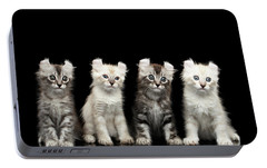 Four American Curl Kittens With Twisted Ears Isolated Black Background Portable Battery Charger by Sergey Taran