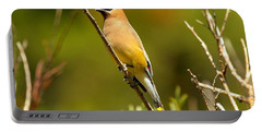 Glacier Cedar Waxwing Portable Battery Charger by Adam Jewell