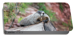 Groundhog On A Log Portable Battery Charger by Jess Kraft