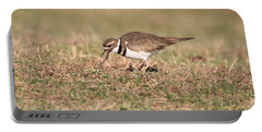 Hungry Killdeer Portable Battery Charger by Karen Silvestri