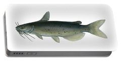 Illustration Of A Channel Catfish Portable Battery Charger by Carlyn Iverson
