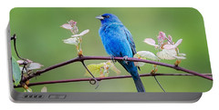 Indigo Bunting Perched Portable Battery Charger by Bill Wakeley