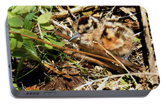 It's A Baby Woodcock Portable Battery Charger by Asbed Iskedjian