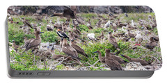 Juveniles Red Footed Boobies Portable Battery Charger by Jess Kraft