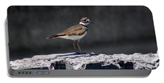 Killdeer Portable Battery Charger by M Images Fine Art Photography and Artwork