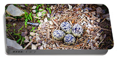 Killdeer Nest Portable Battery Charger by Cricket Hackmann