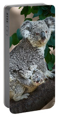 Koala Joey And Mom Portable Battery Charger by Jamie Pham