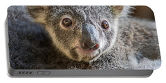 Koala Joey Close Portable Battery Charger by Jamie Pham