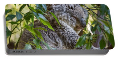 Koala Joey Portable Battery Charger by Jamie Pham