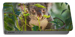 Koala Leaves Portable Battery Charger by Jamie Pham