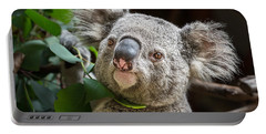 Koala Male Portrait Portable Battery Charger by Jamie Pham