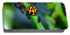 Ladybird And The Ants 2 By Kaye Menner Portable Battery Charger by Kaye Menner