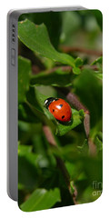 Ladybug Portable Battery Charger by Carol Groenen
