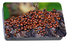 Ladybugs On Branch Portable Battery Charger by Garry Gay