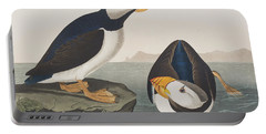 Large Billed Puffin Portable Battery Charger by John James Audubon