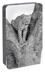 Leopard In A Tree Portable Battery Charger by Richard Garvey-Williams