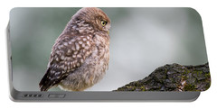 Little Owl Chick Practising Hunting Skills Portable Battery Charger by Roeselien Raimond