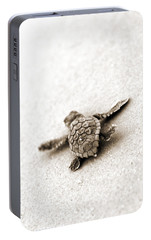Loggerhead Portable Battery Charger by Michael Stothard