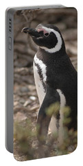 Magellanic Penguin No. 1 Portable Battery Charger by Sandy Taylor
