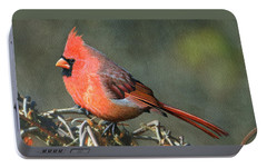 Male Cardinal Portable Battery Charger by Ken Everett