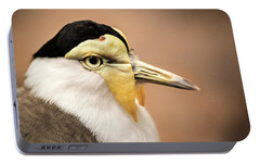 Masked Lapwing Portable Battery Charger by Don Johnson