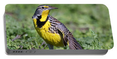 Meadowlark On The Runway Portable Battery Charger by Kathleen Bishop