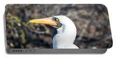 Nazca Booby View Portable Battery Charger by Jess Kraft