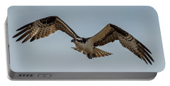 Osprey Flying Portable Battery Charger by Paul Freidlund