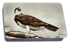 Osprey Sea Hawk Portable Battery Charger by James Williamson