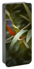 Painted Bunting Male Portable Battery Charger by Phill Doherty