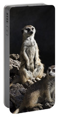 Partners In Crime Portable Battery Charger by Douglas Barnard
