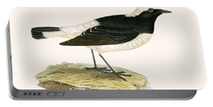 Pied Wheatear Portable Battery Charger by English School