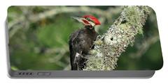 Pileated Perch Portable Battery Charger by Al Powell Photography USA