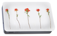 Poppy Blossoms Portable Battery Charger by Brittany Bevis