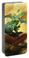 Potato Plant Portable Battery Charger by Science Source