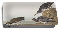 Purple Sandpiper Portable Battery Charger by John James Audubon