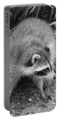 Raccoon - Black And White Portable Battery Charger by Carol Groenen