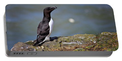 Razorbill Portable Battery Charger by Vicki Field