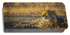 Reclining Cheetah Portable Battery Charger by Inge Johnsson