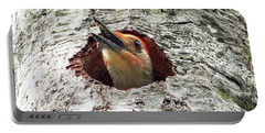 Red-bellied Woodpecker 03 Portable Battery Charger by Al Powell Photography USA