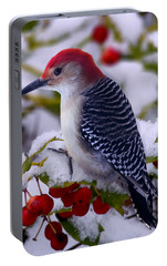 Red Bellied Woodpecker Portable Battery Charger by Ron Jones